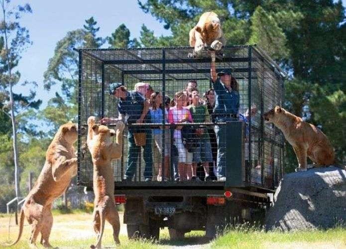 حديقة حيوانات بورصة